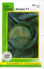 Cabbage white Amtrak F1 (20 seeds)