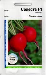 Garden radish Celesta F1 (3 g)