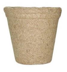 Peat pots (peat glasses) of Jiffy (Dzhiffi) of 6х6