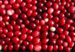 The cranberry frozen from the producer