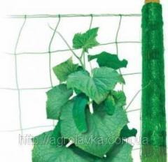 Grid shpalerny cucumber 1,7m x 500 m (KITAY)