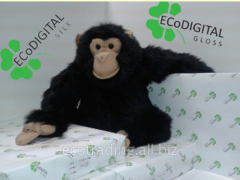 EcoDigital for paper for printing full-color