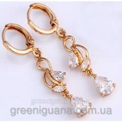 Long gilded earrings from tsirkona (gf530