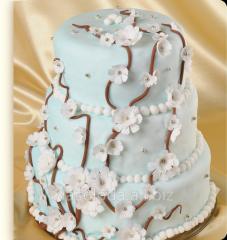 Cake N_zhn_st to spring