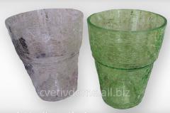 POT-CACHE-POT FOR ORCHIDS GLASS