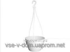 Pot plastic suspended DP (23 of cm)