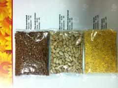 Sunflower Sunflower seed Kernel/kernel,