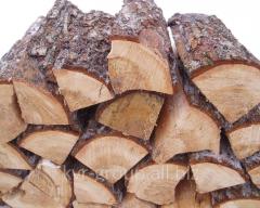 Firewood chopped oak, chamber drying solid wood
