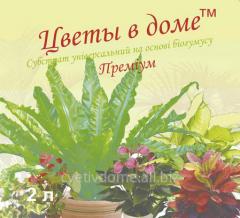 Субстрат на основе биогумуса для рассады овощей