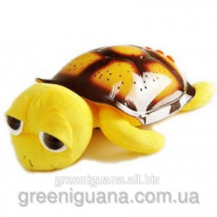 Musical Turtle of Tony, yellow