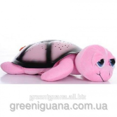 Musical Turtle of Tony, pink