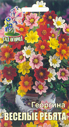Цветы веселые ребята махровые