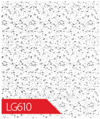 Ceiling plate of LG610