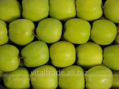 Mutsu's (Mutsu) apples