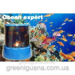 Projector Ocean of Master