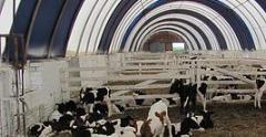 Ферма-ангар для скота