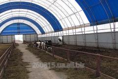 Hangar of agricultural purpose