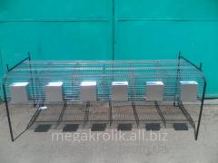 Cage for rabbits feeding single-tier KO-1