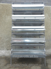 Cage for quails of KP-1-5