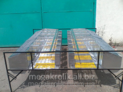 Cage uterine single-tier KM-2