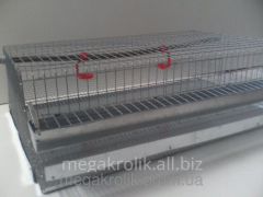 Cage for quails of KP-1