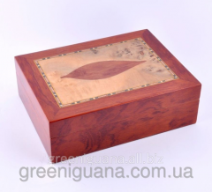 Humidor for storage of cigars 15kh19kh8sm (9E41)