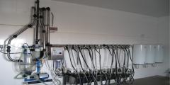 Инновация: Устройство для определения качества очистки поверхности молокопроводов