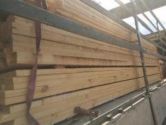 Timber cut (pine). Export.