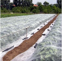 Agrofibre 23 UV 3,2*100