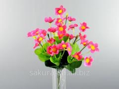 Bouquet / Agrostemma / 0,3 m / 28 flowers, 42