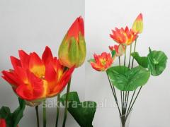 Лотос / Стебель / 0,78 м / 3 цветка, 1 бутон, 1