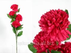 Хризантема / 1,1 м / 5 цветков / 10 листьев /