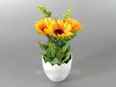 Flower in e35210 pot / Sunflower