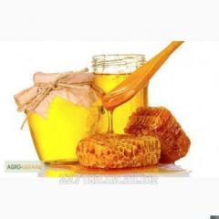 Honey mature full