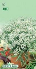 Семена Аниса  0,5 г