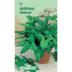 Semyon Valeriana of medicinal 0,1 g