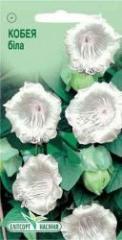 Семена Кобеи белой