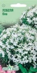 Semen Lobelia of white