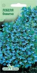 Semen Lobelia blue