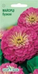 Semyon Tsiniya of lilac