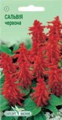 Semyon Salviya brilliant red