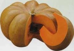 Pumpkin seeds de Provence Muscat of 0,5 kg
