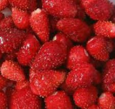 Seeds of wild strawberry of Ali Woman of 0,2 g