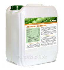 The Florenta microfertilizer for bean cultures
