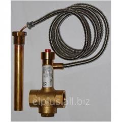 Protective Regulus BVTS 14480 valve