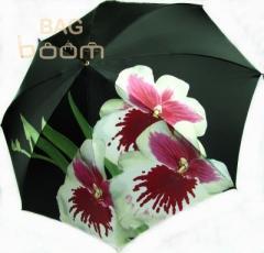 Женский зонт DOPPLER (артикул 12021)