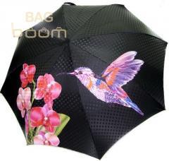 Женский зонт DOPPLER (артикул 34521 колибри розовый)