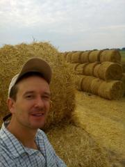 Тюки из соломы пшеницы