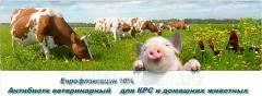 Antibiotics veterinary of different groups