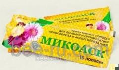 Mikoask - strips from ascospherosis and